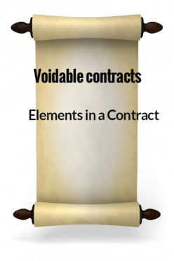 Elements in a Contract XXIX - Voidable Contracts