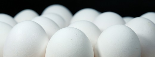 Eggs for Brains