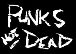 Cyber Punk'd