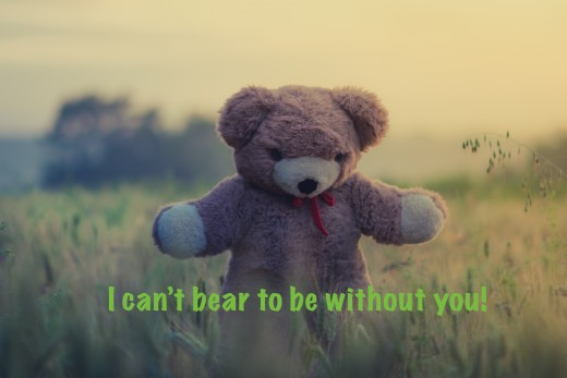 Teddy Bear Love Note Photo