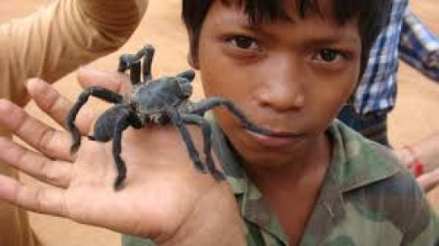 Cambodians once were starved and had to eat stuff like tarantulas. Now, more than half the country eat them all the time.