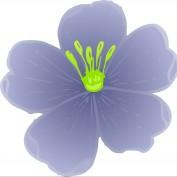 mydana profile image