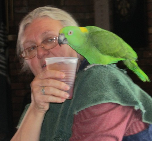 """Nothing like a cup of tea and the morning's """"From the parrot's beak"""". - Photo by George Sommers"""