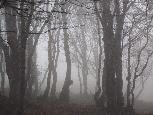 Do you have a ghost or an elemental haunting?