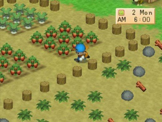 Farming in Harvest Moon: Back to Nature