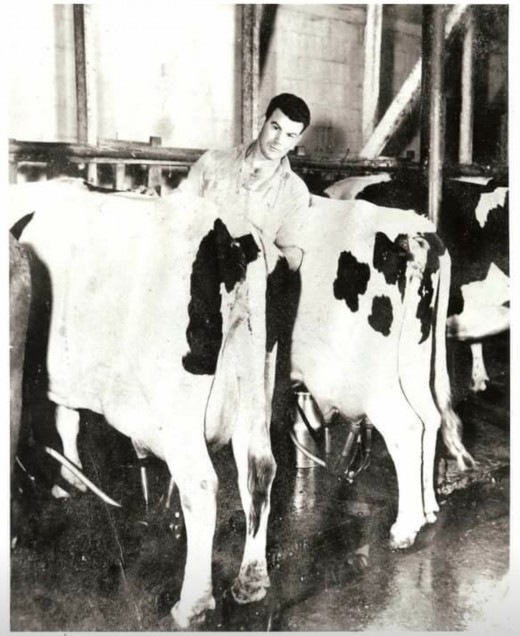 "Frank Hodges Sr. milking his herd. Always used to say the he was ""too poor to buy cheap tools."" Funny enough, he never really carried anything in his pockets. My grandfather's old Ford pick-up was his pocket."