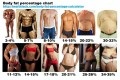The Skinny on Body Fat Percentage