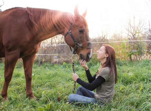 Ensure the person leasing your horse is someone you trust and can communicate clearly with.