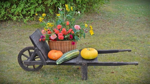 A harvest of flowers and vegetables from the home garden.