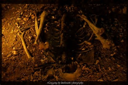 """The oldest skeletal remains ever found in Malaysia were dubbed """"Perak Man""""."""