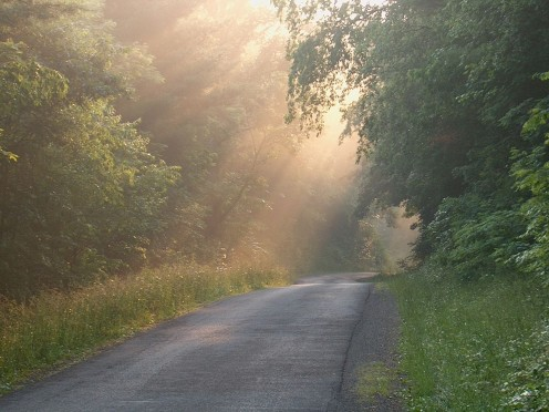 Morning fog on rural road. Picture taken on county route 13 in Pocahontas County, West Virginia in July 2006. Picture taken and uploaded by Wyatt Greene.