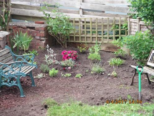 Back Garden Progress