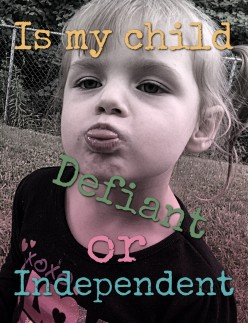 My Toddler Never Listens To Me - Disobedience or Independence?