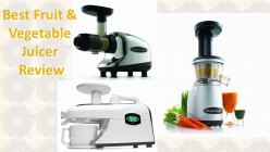How to Buy the Best Fruit and Vegetable Juicer: Top Juicers Review