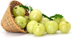 Health benefits of Amla fruit , the humble Indian Gooseberry