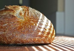 Bake Better Hearth Bread - Use a Pre Ferment to Improve the Taste of Your Home Baked Loaves (Recipe)!