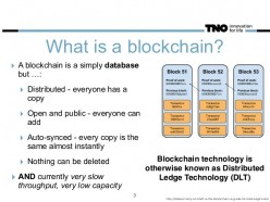 The Basics of the Blockchain