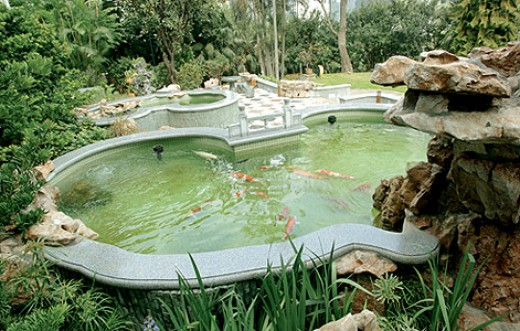 How to build an outdoor fish pond hubpages for Outside fish pond