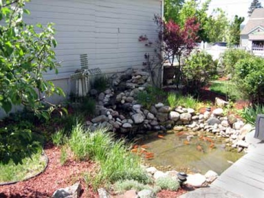 How to build an outdoor fish pond hubpages for Outdoor fish pond care