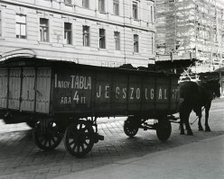 Who Were the Icemen of Budapest?