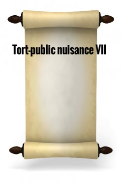Tort-Private Nuisance VII