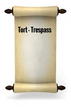 Tort - Trespass