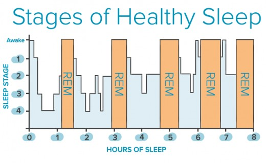 A depiction of a healthy and restorative sleep cycle.