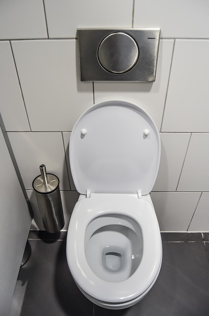 Every woman deserves a clean toilet when she enters the stall.