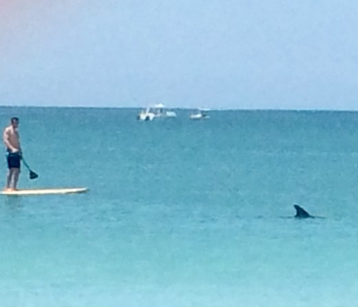 Typical scene off Nokomis Beach in Venice