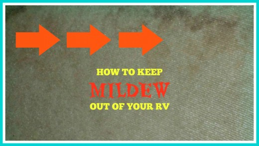 Advice that will help you to eliminate the mildew problem in your recreational vehicle.