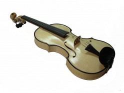 Why Do Violins Not Have Frets Like Guitars?