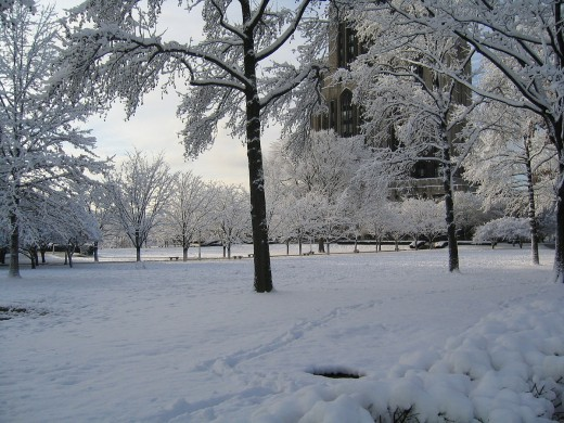A snow-covered park in Pittsburgh, Pennsylvania, during winter.