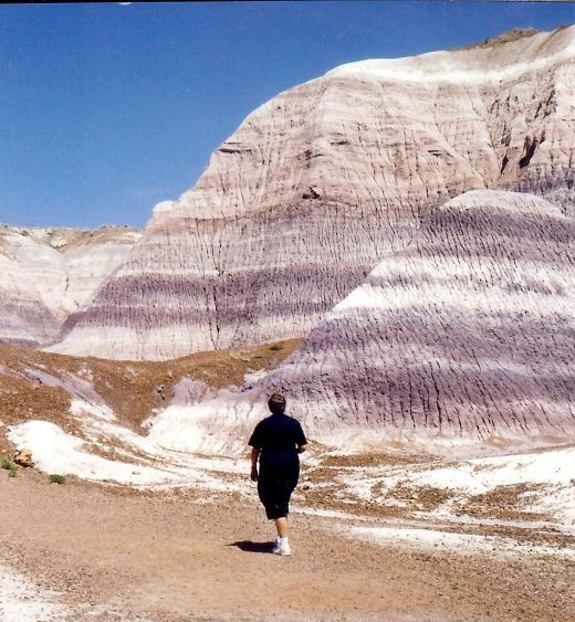 Be sure and carry lots of water with you if walking in the Badlands of the Petrified Forest National Park!