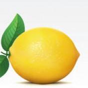 The Lemony Life profile image