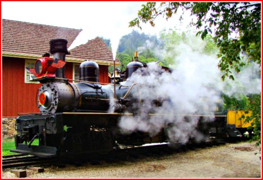 Do something you have never done before, like taking a ride on a train that is pulled by a steam engine!