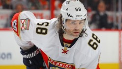 Should the Senators Sign Jagr?