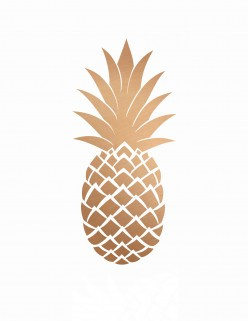 The Pineapple Awards 2017 Q1