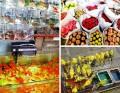 Hong Kong: Goldfish, Songbird, and Flower Markets