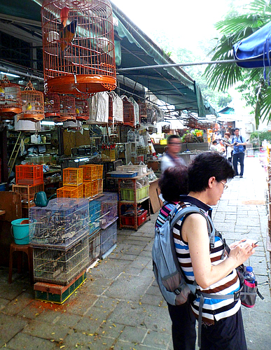 Songbird Market is popular with locals and visitors.