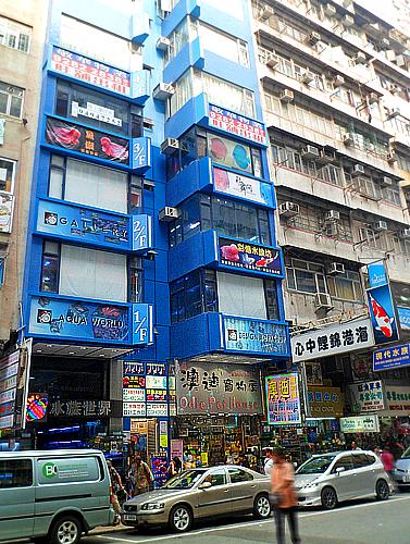 Tung Choi Street (Goldfish Market)