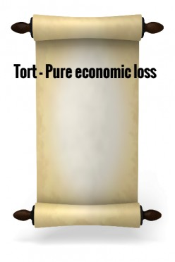 Tort - Pure Economic Loss