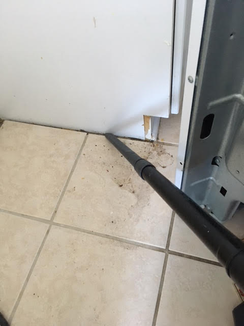 Vacuum and wash floor to remove food debris