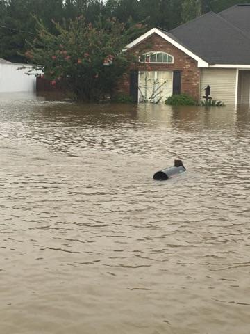 Check out how high the water is. That is a mailbox sticking up just above the water level.