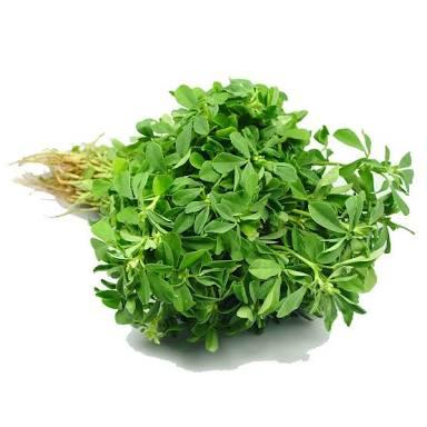 Fenugreek herb / Methi saag