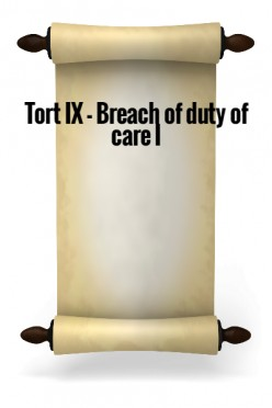 Tort IX - Breach of Duty of Care I