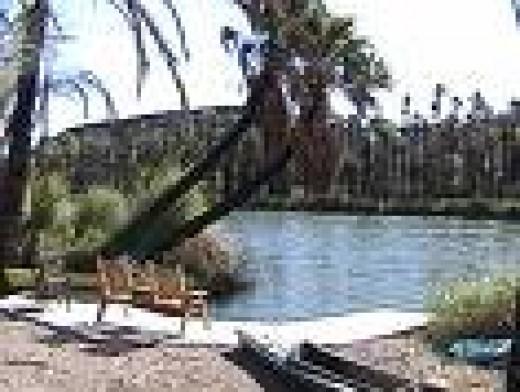 A Baja Oasis.  San Ignacio