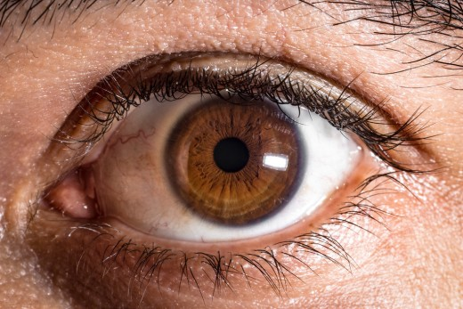 The reddish tissue in the corner or our eyes is the vestigial remnant of our own nictitating membrane.
