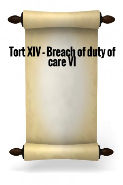 Tort XIV - Breach of Duty of Care VI