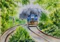 Local Train to Mysore