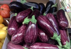 History and Health Benefits of Consuming Eggplant